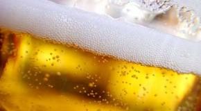 Ciel, il reste un fond de bière !!