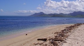 Une île de rêve, de la bière, pas de femme : le paradis?